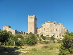 Abbaye de Montmajour (Bouches-du-Rhône, France, 2008)